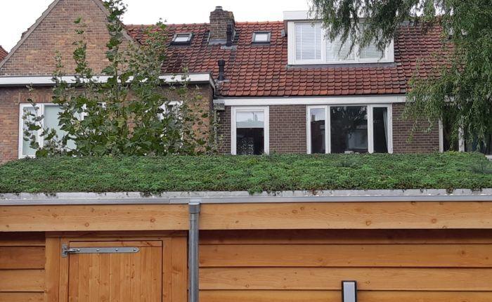 Groen dak op schuur met een dakgoot en regenpijp